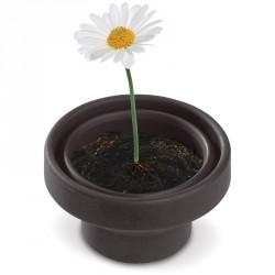Petit jardin avec pot pliable - Marguerite
